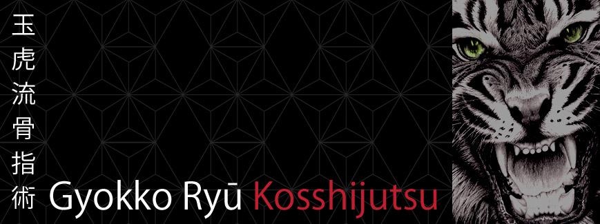 gyokko ryu kosshijutsu