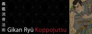 ninjutsu_gikanryu