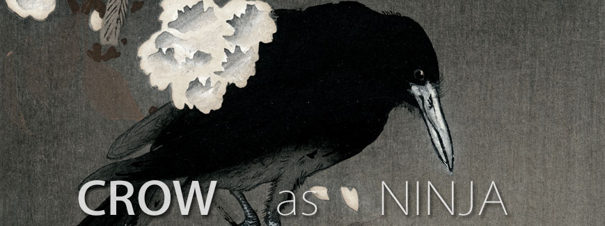 ninja crow